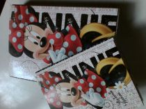 Box a4+a5 minnie